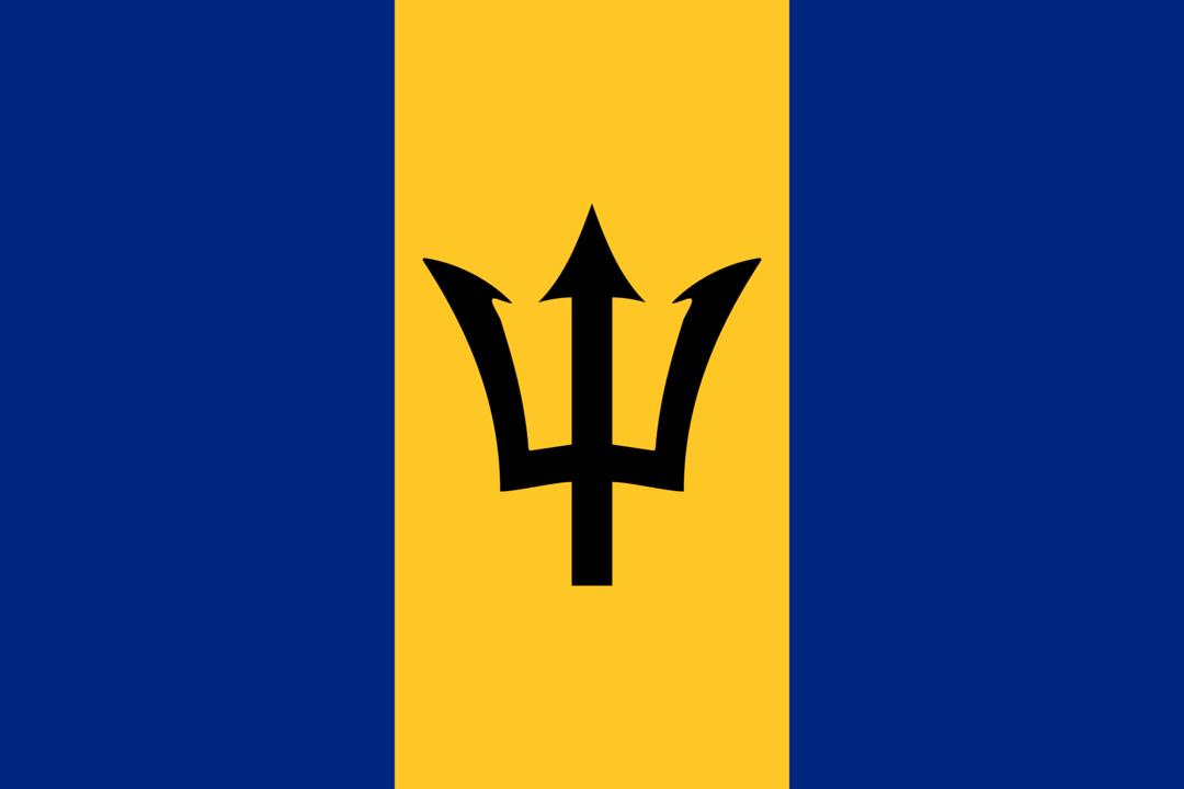 Barbados flag icon